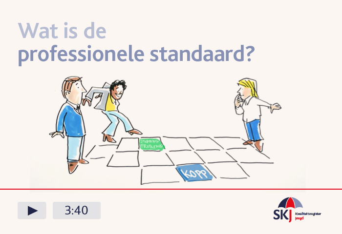 Video Wat is de professionele standaard